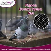 Pigeon Control Services,  India | Pigeono.com