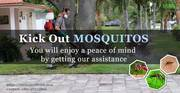 Mosquito Control Service at your doorstep